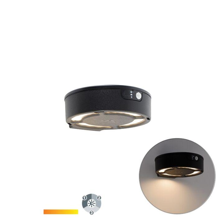 Buitenwandlamp-zwart-incl.-LED-solar-3000-6500K---Fortunato