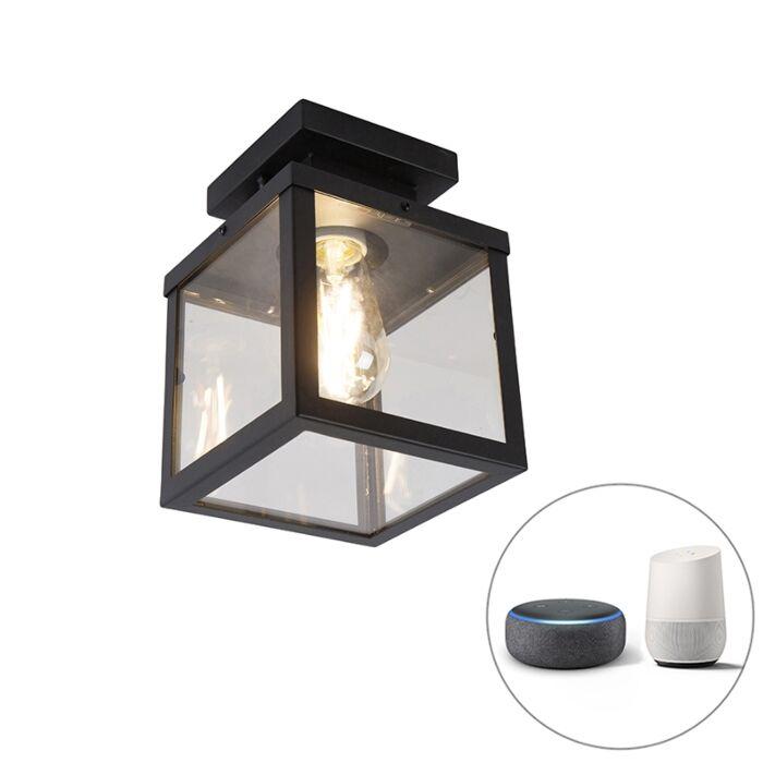 Industriële-smart-buitenplafondlamp-zwart-incl.-ST64-Wifi---Rotterdam