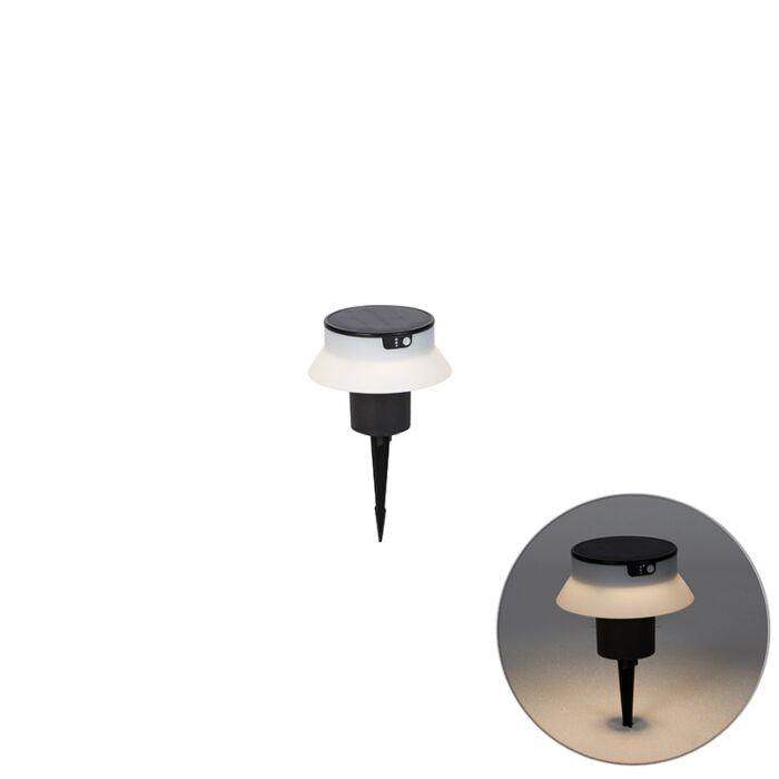 Buitenpaaltje-met-grondpin-zwart-incl.-LED-solar-3000-6500K---Felice