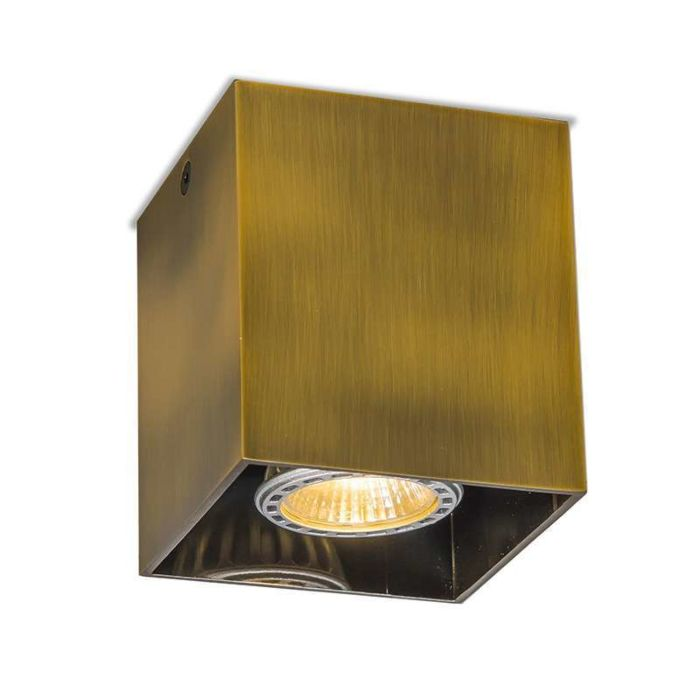 Spot-Qubo-1-brons