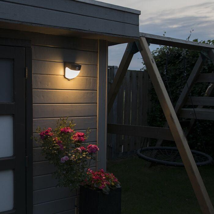 Solar-LED-buitenlamp-Scout-donkergrijs