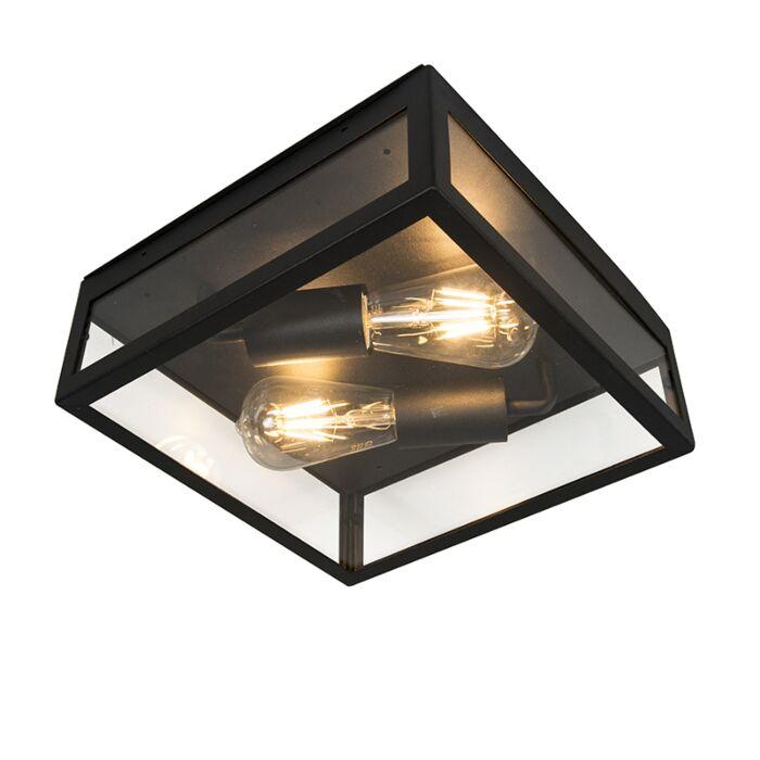 Industriële-buitenplafondlamp-zwart-2-lichts---Rotterdam