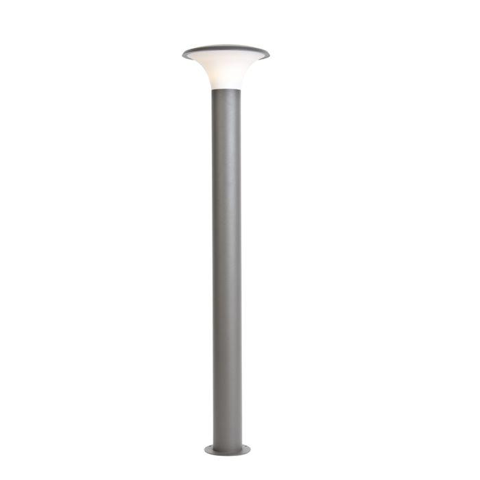 Moderne-buitenlamp-donkergrijs-120cm-incl.-LED---Papi
