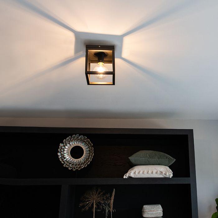 Industriële-plafondlamp-zwart---Cage-1