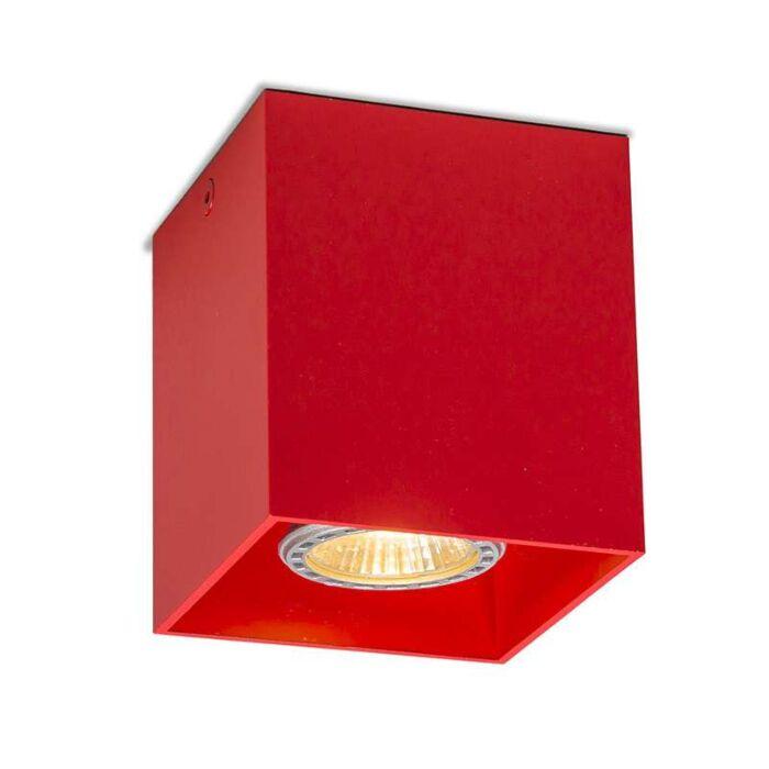 Spot-Qubo-1-rood