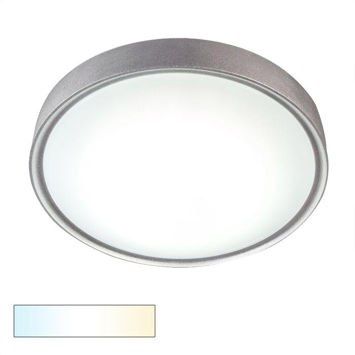 Plafonniere-Avanti-II-18W-LED-zilver