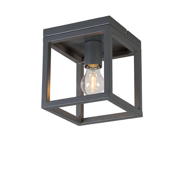 Industriële-plafondlamp-antraciet---Cage-1