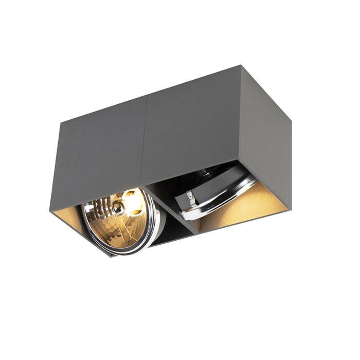 Design-spot-rechthoekig-2-lichts-grijs-incl.-2-x-G9---Box