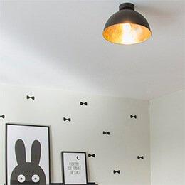 Lampenlicht - Montage instructies plafondlampen
